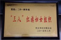 """2015年3月被授予""""三八""""红旗妇女组织"""